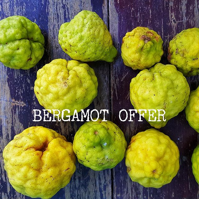 BERGAMOT BUNDLE OFFER 🍋 Spring is just around the corner, the days are slowly getting longer and we are feeling a surge of motivation. 🍋 What better way to use it than getting rid of the metaphorical (and sometimes literal) cobwebs of Winter and freshening up our homes. We are here to support you with our Bergamot Spring Clean Bundle! 🍋 The bundle contains a Village Reed Diffuser, Village Classic Candle and Village Home Scent in our refreshing Bergamot fragrance. 🍋 Together, these products would total at £88 but in this special promotion we are offering the bundle for £60 – a saving of £28. 🍋 Stock of the Bergamot Spring Clean Bundles is very limited, so make sure to get your hands on one while they are still available.