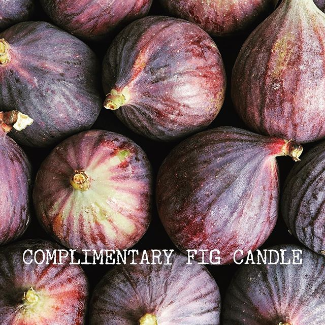 FRAGRANCE FRIDAY:  FIG 🌱 Receive a complimentary Fig 20cl candle worth £24 with any order over £60 🌱 If you love our gift size candles as much as we do, you can also purchase a summer bundle of six for just £100 🌱 English Garden Fig Jasmine Tea Seashore Rainstorm Moroccan Rose 🌱 Years ago I helped a good friend plant a little fig tree in her garden. We have watched it grow and eventually bear fruit, which ripens with the sun to become dark purple and delicious. Each year my friend leaves a parcel of figs as a thank you for helping to plant the tree. Unwrapping the brown paper is always a delight, the fragrance is fresh and leafy green with warmth, sweetness and depth. This is summer for me! If you haven't tried it already now is your opportunity!